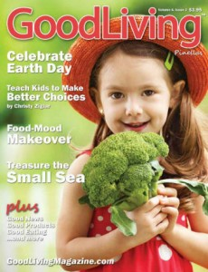 spring 2013 cover small